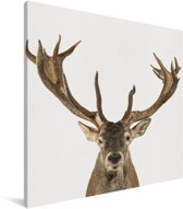 Hert - Portret dierenprint kinderkamer Canvas 50x50 cm - Foto print op Canvas schilderij (Wanddecoratie woonkamer / slaapkamer)