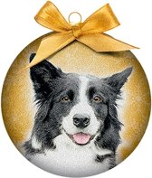 Ornament frosted border collie