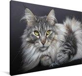 Een mooi liggende Maine Coon kat Canvas 140x90 cm - Foto print op Canvas schilderij (Wanddecoratie woonkamer / slaapkamer) / Huisdieren Canvas Schilderijen