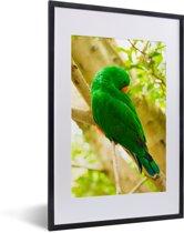 Foto in lijst - Groene edelpapegaai zit op een takje fotolijst zwart met witte passe-partout 40x60 cm - Poster in lijst (Wanddecoratie woonkamer / slaapkamer)
