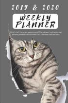 2019 & 2020 Weekly Planner What's That? You've Got Appointments? This Cat Says