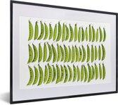 Foto in lijst - Drie rijen van groene peultjes tegen een witte achtergrond fotolijst zwart met witte passe-partout klein 40x30 cm - Poster in lijst (Wanddecoratie woonkamer / slaapkamer)