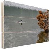 Grote zaagbek zwemt door een meer op een herfstachtige dag Vurenhout met planken 80x60 cm - Foto print op Hout (Wanddecoratie)