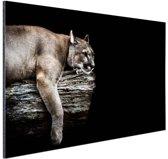Liggende poema Aluminium 120x80 cm - Foto print op Aluminium (metaal wanddecoratie)
