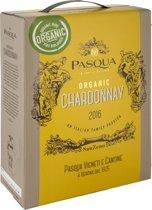 Pasqua – Chardonnay Bio - Bag in Box