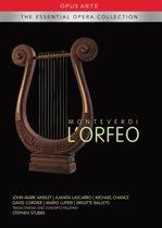 Lorfeo (Dno)