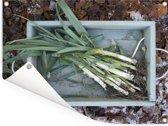 Prei in een houten kist met bladeren op de achtergrond Tuinposter 80x60 cm - Tuindoek / Buitencanvas / Schilderijen voor buiten (tuin decoratie)