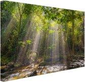 Zonnestralen door bladerdek Canvas 120x80 cm - Foto print op Canvas schilderij (Wanddecoratie woonkamer / slaapkamer)