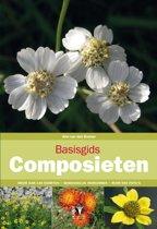 Basisgids 5 - Basisgids composieten