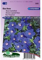 Sluis Garden Blauw Guichelheil Blue Noon