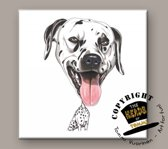 Tegel Hond Dalmatier