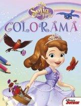 Disney Colorama Sofia the First