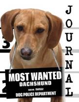Most Wanted Dachshund Journal
