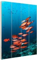 FotoCadeau.nl - Rode vissen voor blauwe achtergrond Hout 20x30 cm - Foto print op Hout (Wanddecoratie)