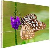 Vlinder paarse bloem Hout 60x40 cm - Foto print op Hout (Wanddecoratie)
