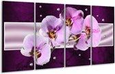 Glasschilderij Orchidee   Paars, Wit   160x80cm 4Luik   Foto print op Glas    F005621