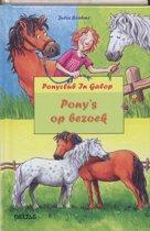 Ponyclub in galop 56. Pony's op bezoek