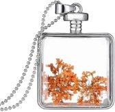 Fako Bijoux® - Ketting - Gedroogde Bloem - Vierkant - Zilverkleurig - Oranje