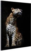 Luipaard portret  Aluminium 120x180 cm - Foto print op Aluminium (metaal wanddecoratie) XXL / Groot formaat!