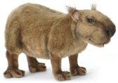 Pluche capibara knuffel 31 cm