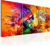 Schilderij - Kleurrijke Papegaai , 3 luik