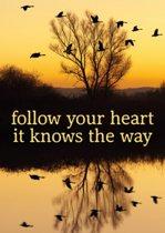 Ansichtkaarten Follow your heart - 15x10.5 - Papier (10 stuks)