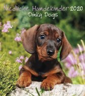 Puppies - Dinky Dogs Kalender 2020