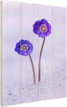 Paarse bloem in de sneeuw Hout 20x30 cm - klein - Foto print op Hout (Wanddecoratie)