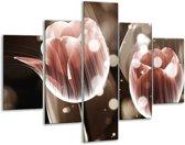 Glasschilderij Tulp | Bruin, Grijs | 100x70cm 5Luik | Foto print op Glas |  F005090