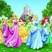 Dutch Wallcoverings Fotobehang Princess,  4-d