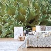 Fotobehang Green Organic Texture | V4 - 254cm x 184cm | 130gr/m2 Vlies