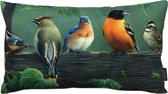 Painted Birds Kussenhoes | Katoen / Linnen | 30 x 50 cm