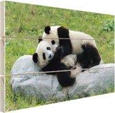 Twee grote pandas op een steen Hout 160x120 cm - Foto print op Hout (Wanddecoratie) XXL / Groot formaat!