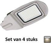 30W LED Straatlamp | 4000K |Als terrein, oprit en pleinverlichting|set van 4
