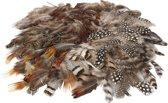 Natuurlijke veren, 6 dozen