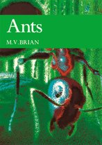 Ants (Collins New Naturalist Library, Book 59)