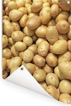 Geschilde aardappelen op een hoop in de laaglanden van Chili Tuinposter 80x120 cm - Tuindoek / Buitencanvas / Schilderijen voor buiten (tuin decoratie)