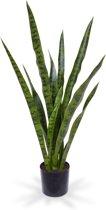 Maxifleur - Sanseveria kunstplant 78 cm