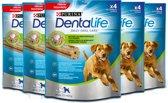 Dentalife Daily Oral Care Large - Hondensnack - 5 x 4 sticks