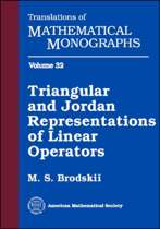 Triangular and Jordan Representations of Linear Operators