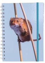 The Comedy Wildlife Notitieboek A5 Muis