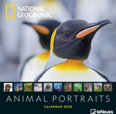 Animal Portraits National Geographic Kalender 2020