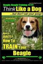 Beagle, Beagle Training AAA Akc