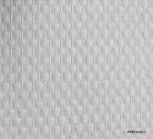 Fitex Glasweefselbehang Standaard Ruit Voorgesausd