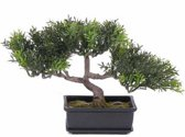 Kunst bonsai boom 23 cm