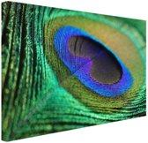 Pauwenveer blauw groen Canvas 30x20 cm - Foto print op Canvas schilderij (Wanddecoratie)