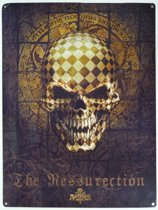 Wandbord - The Ressurection Skull -30x40cm-