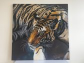 Diamond Painting Crystal Art Kit ® The Tiger 70x70 cm, Partial Painting