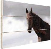 Bruin paard  Hout 60x40 cm - Foto print op Hout (Wanddecoratie)