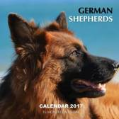 German Shepherds Calendar 2017